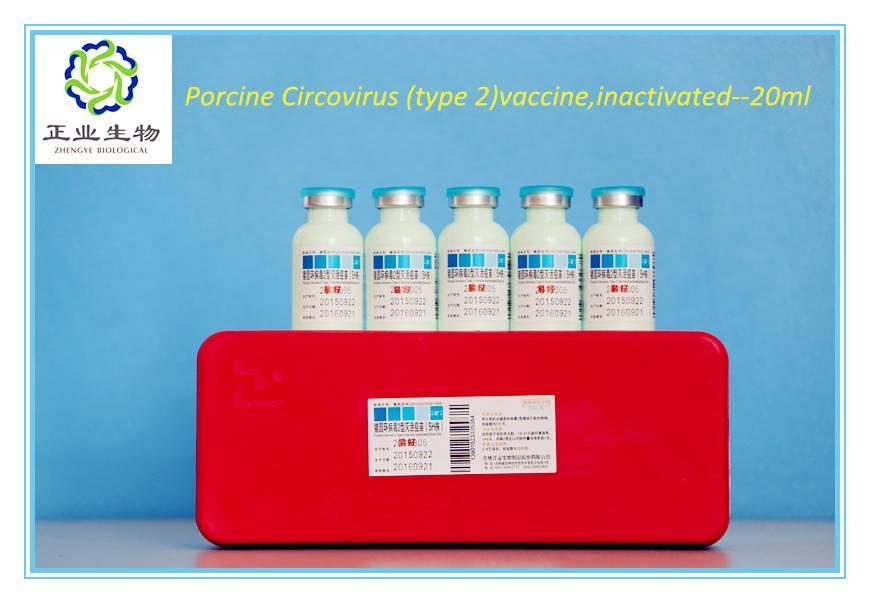Porcine Circovirus (type 2)vaccine,inactivated.