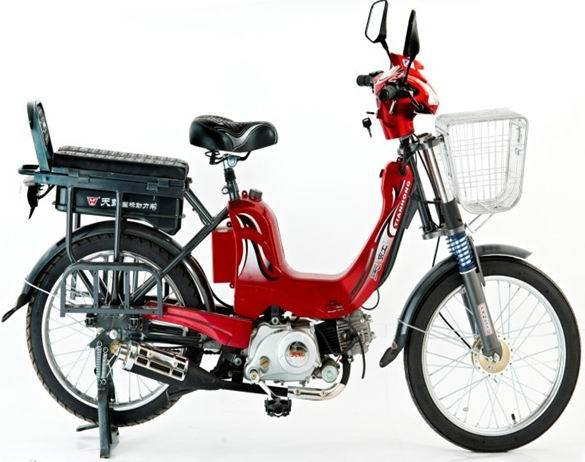 sell: gas scooter (E-GS302)