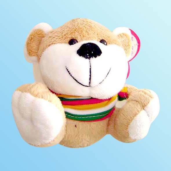 Plush Toy with Voice Recorder
