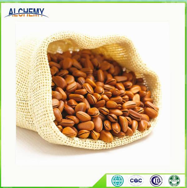 Professional supply pine nut