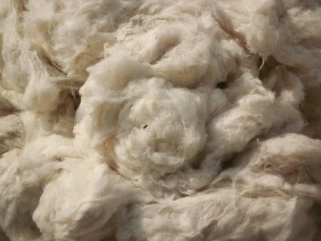 Flats (Cotton Waste)