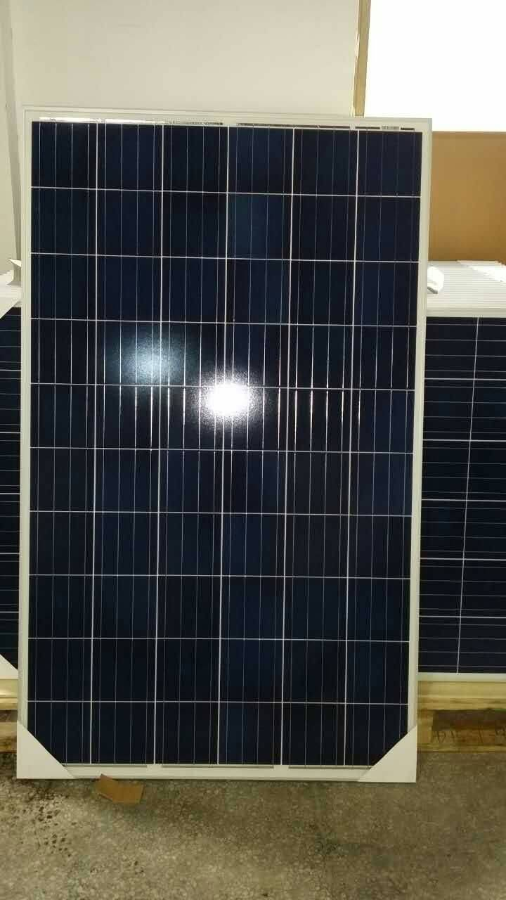 selling 250w poly solar panels