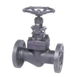 Flange and butt-welded globe valve