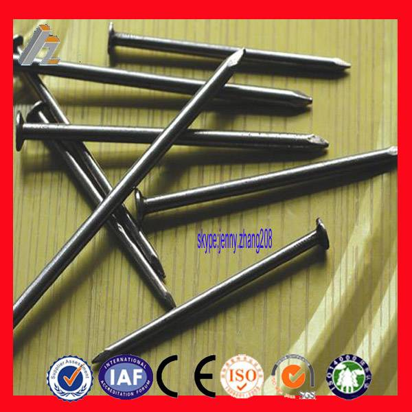widely used hardware common iron nails(manufacture)