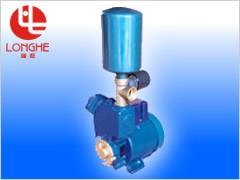 AUGP Automatic Water Suppling Pump