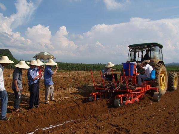 Excellent Help sugar cane seed planter 2CZ-2 TAGRM