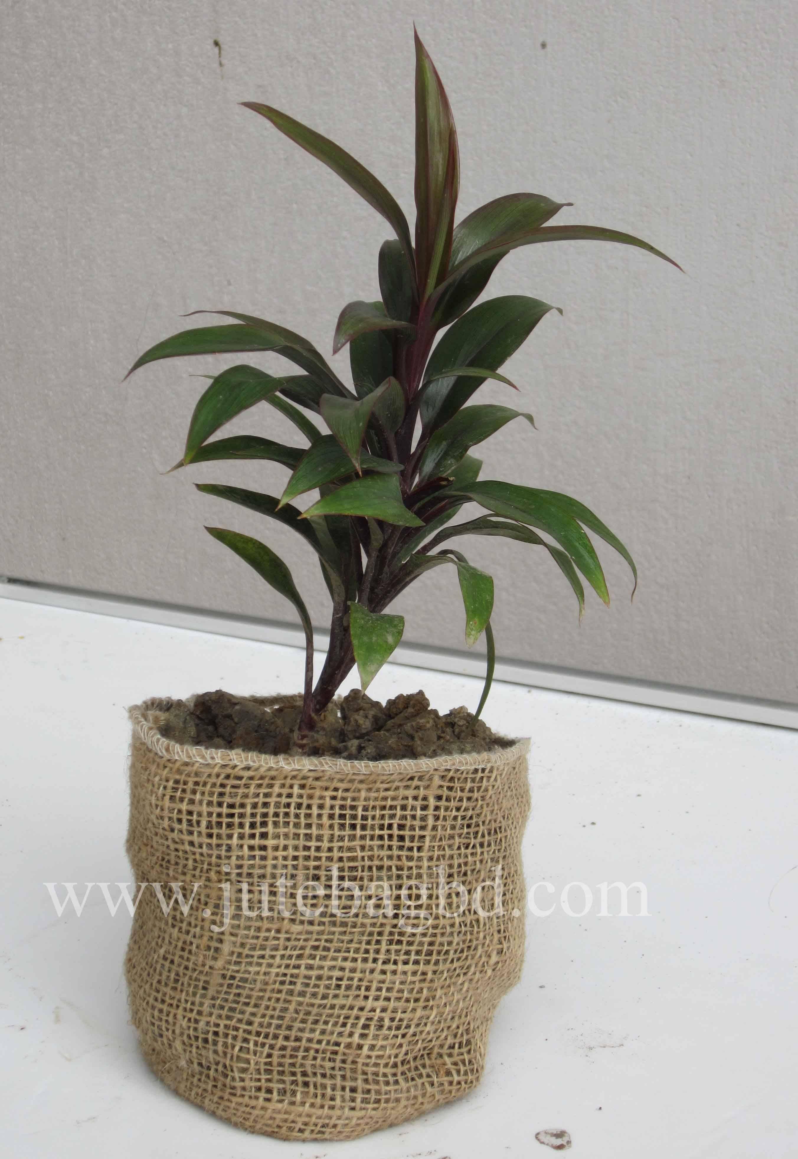 Jute Nursery Pot