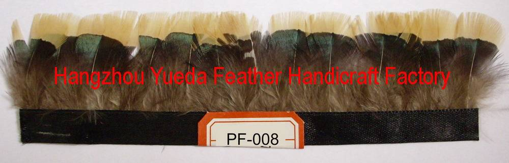 feather trimming-008