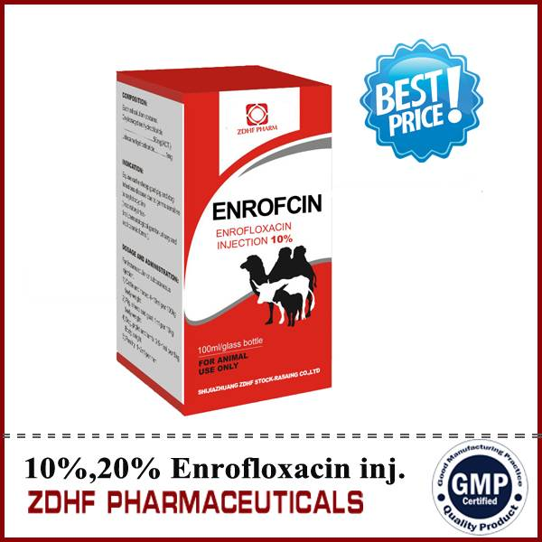 Veterinary drug pharmaceutical companies Enrofloxacin injection of anmal medicine drugs manufacturer