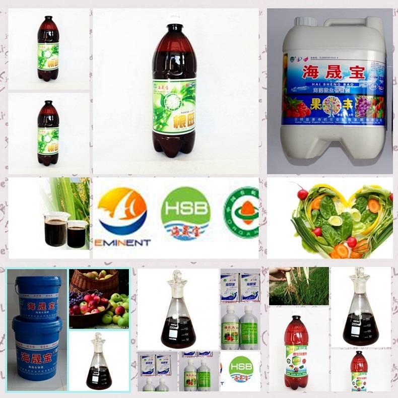 sell Seaweed Microbial organic BIO fertilizer