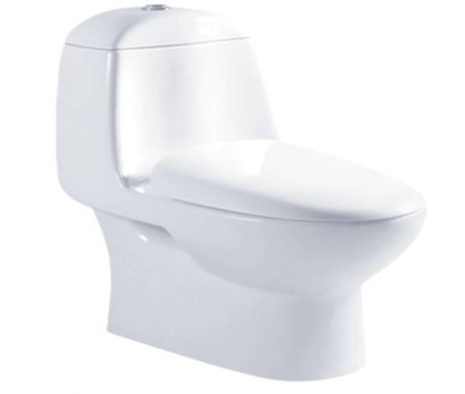 Bathroom ware power wash-down one piece closet