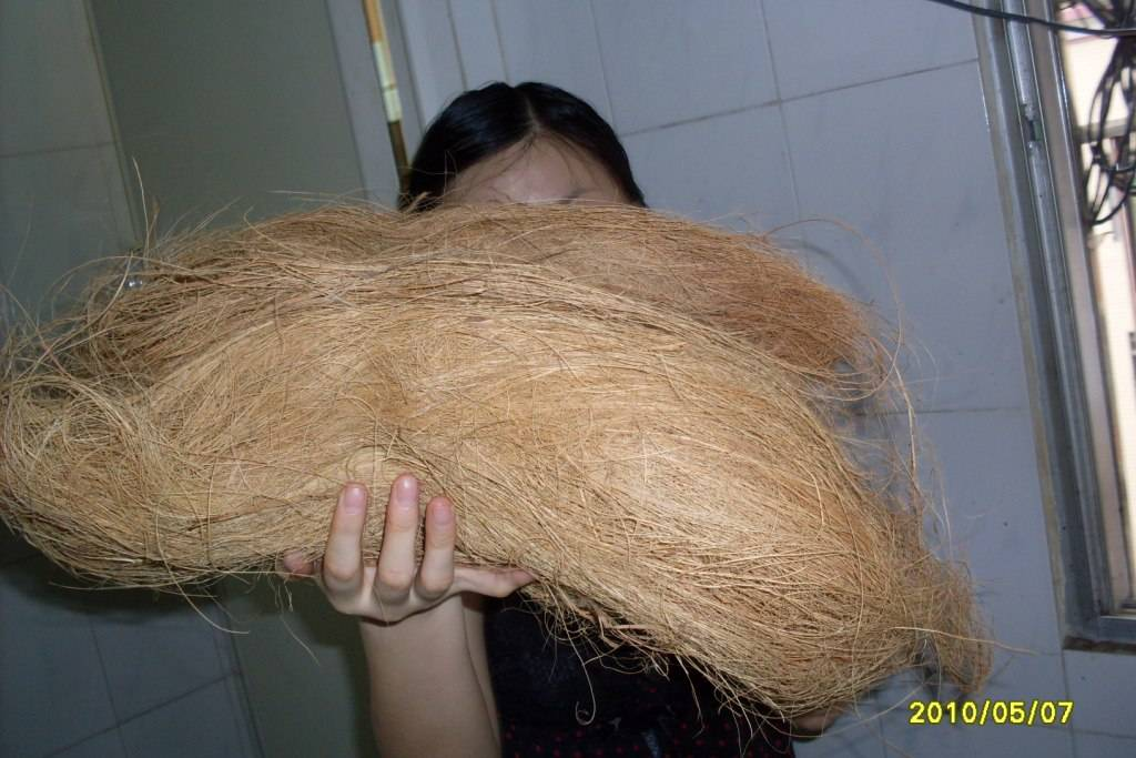 We are selling Coconut Coir Fiber