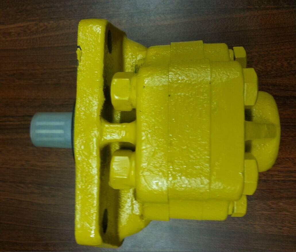 D20 komatsu steering pump