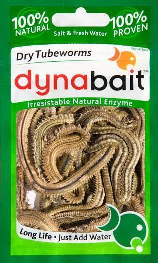 FD marine worms