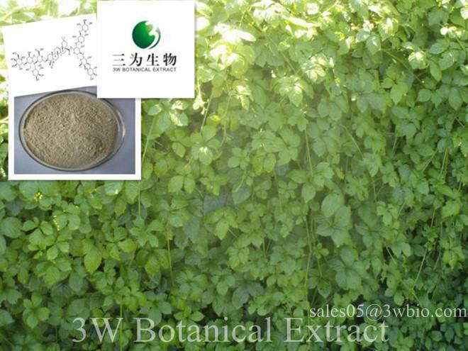 Gynostemma Powder Extract