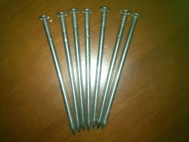selling polished common wire nail from direct manufacturer