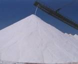 Raw salt exporters