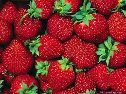 Export Fresh Strawberry