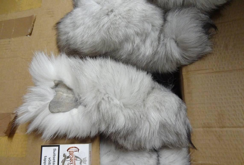 SALE: BLUE FOX TAILS