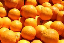 FRESH ORANGES Navel and Valencia Oranges for sell