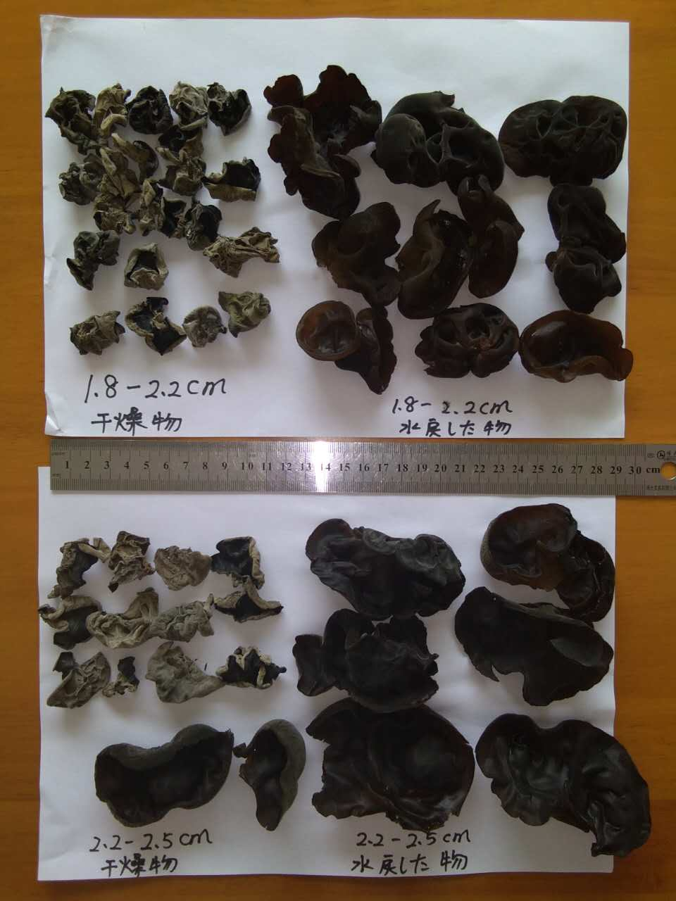High Quality Dried Black Fungus to Japan (Size:1.80-2.50cm)