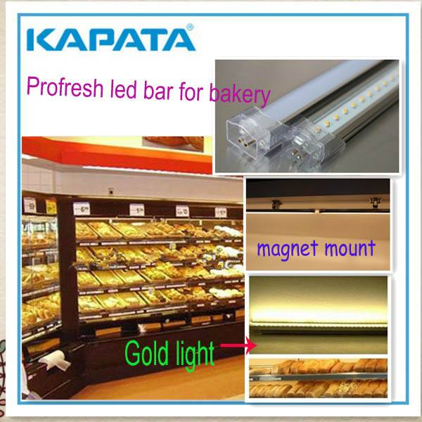 Exclusively food display case lighting bar