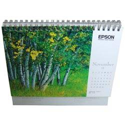 Fashional and high quality calendar printing in china