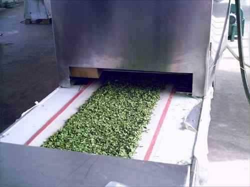 Microwave vegetables dehydrating machine