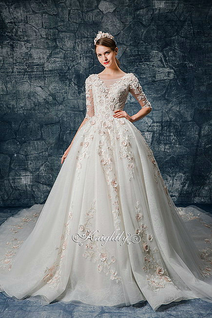 Long Sleeves Bridal Gown