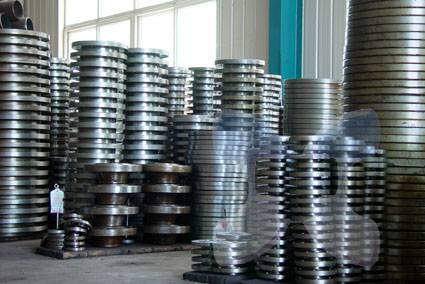 Forge Weld Neck Stainless Steel Flange