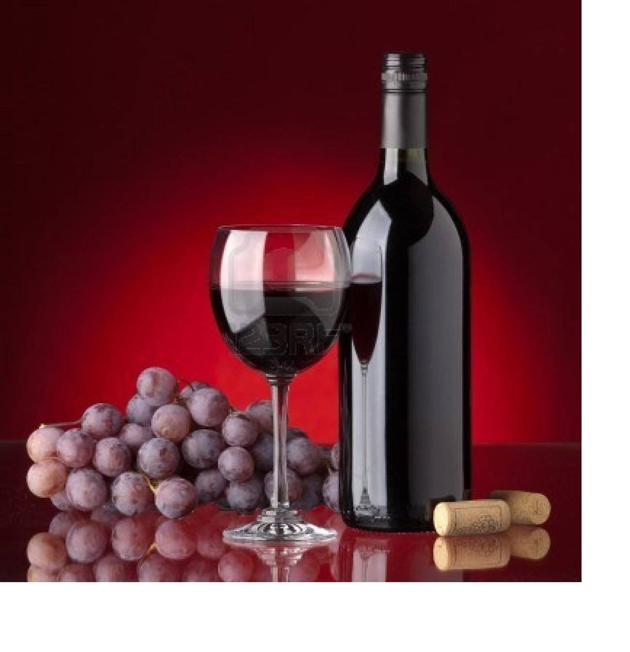Italian wines labels