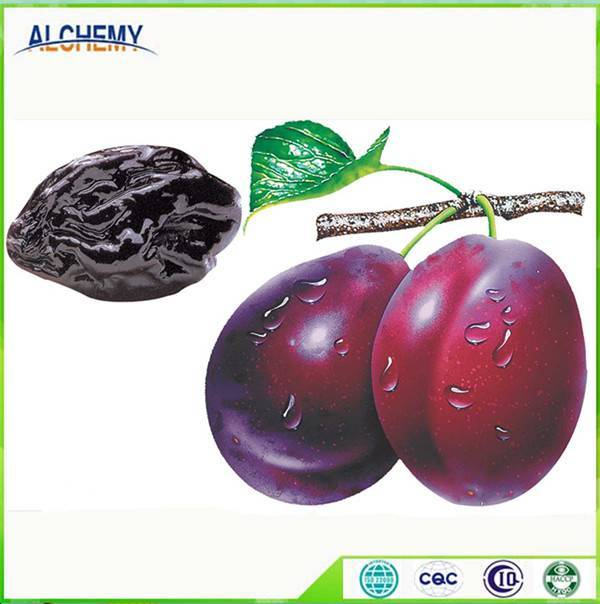 Sell dried Plum