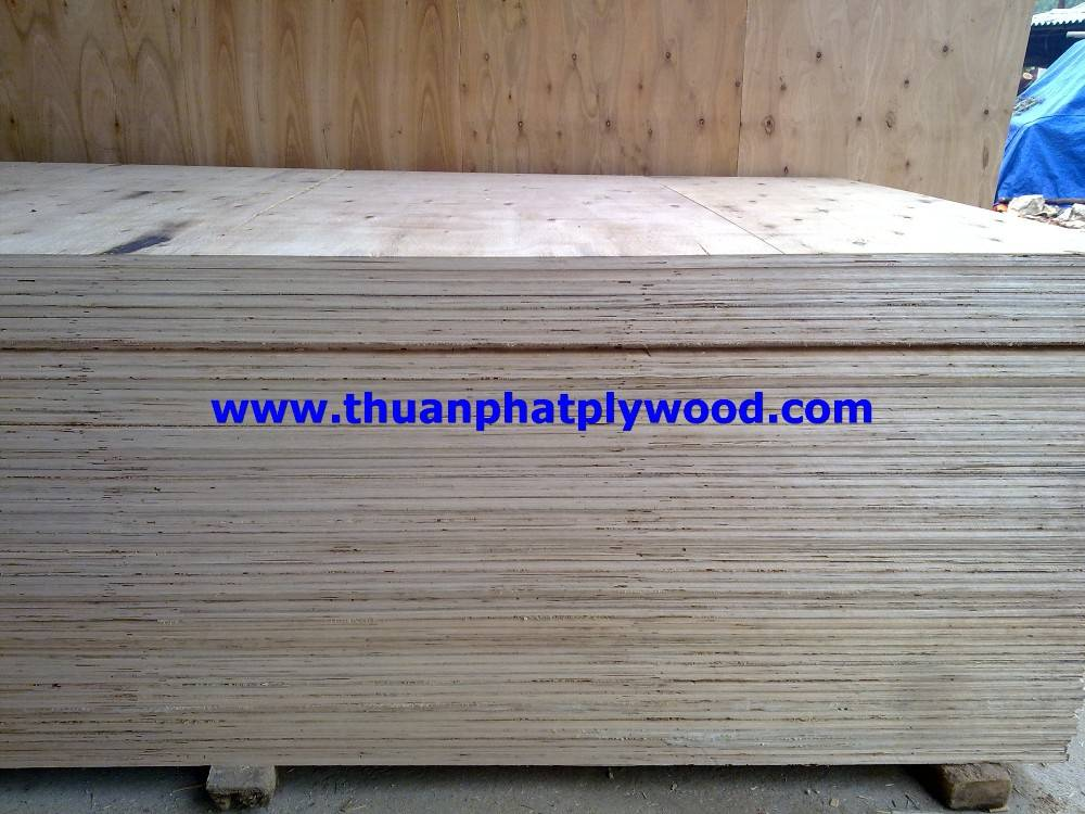 Plywood without face/back