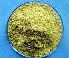 Sell Quercetin Extract