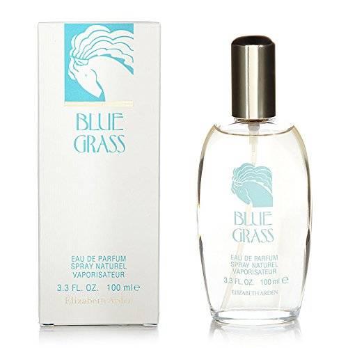Elizabeth Arden Grass Eau de Parfum - 100 ml, Blue
