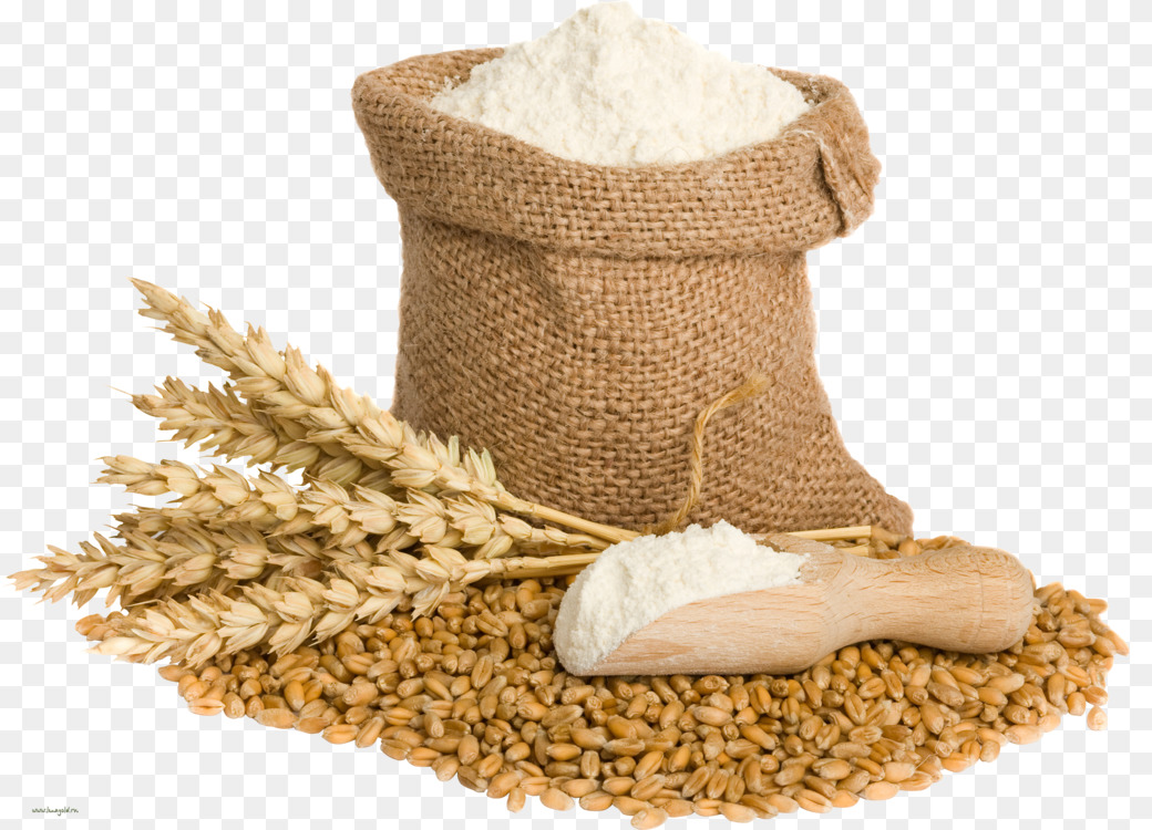 Wheat, Wheat Flour
