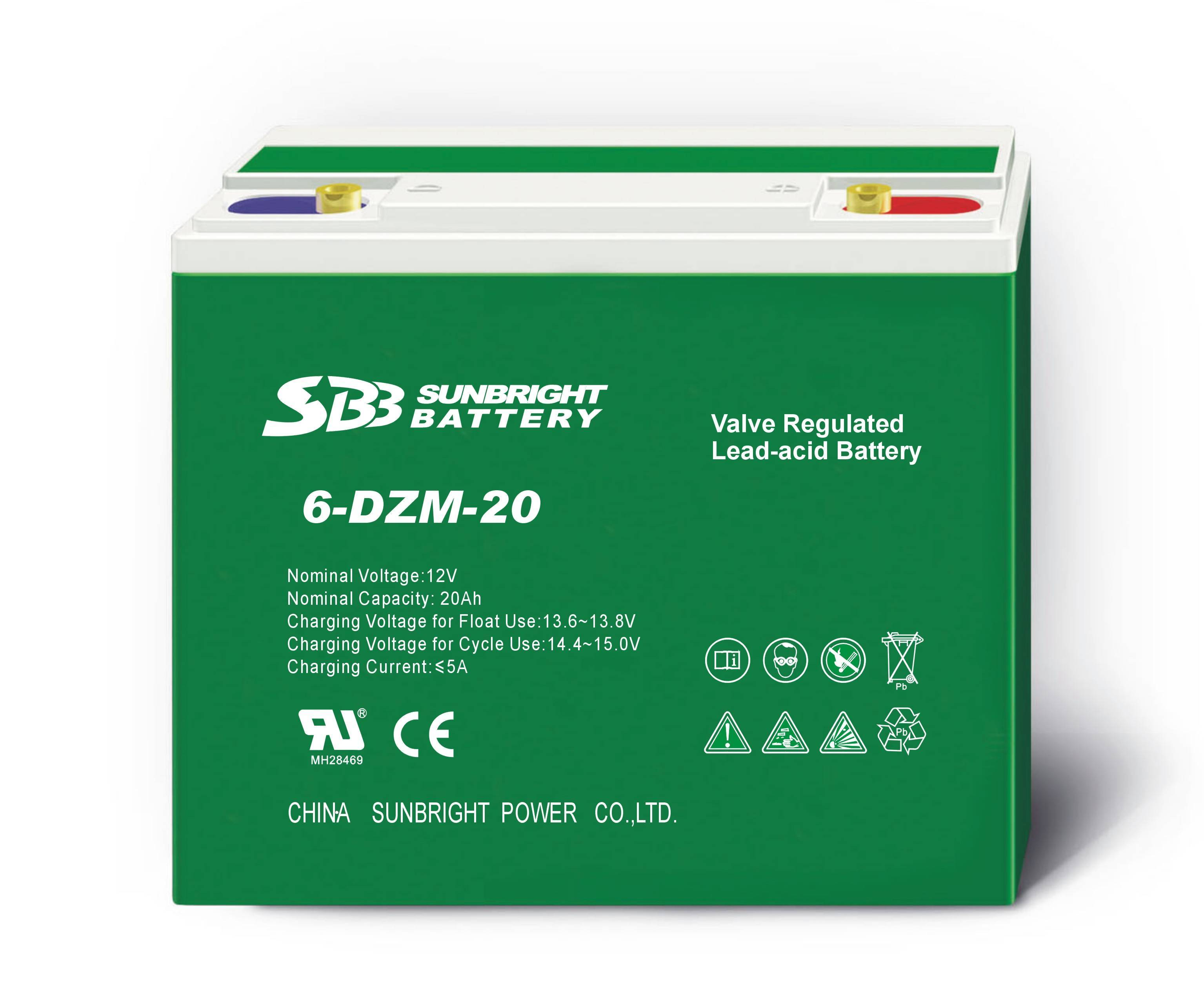 Batteries For Electric Vehicle (lead acid battery)