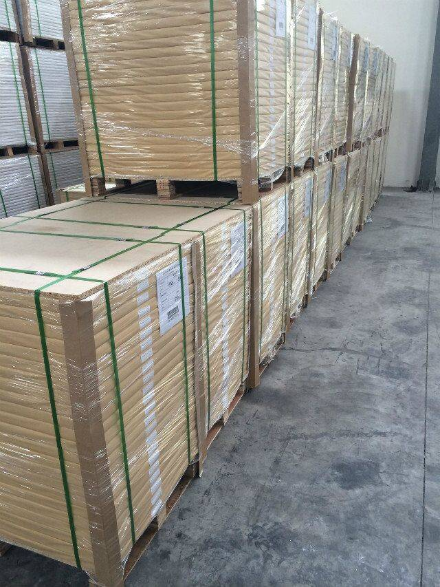 High Quality Double Coated Paperboard