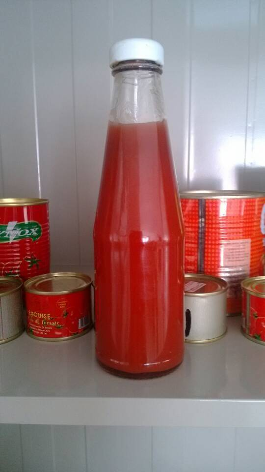 tomato paste in glass or canned