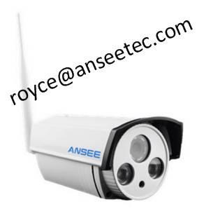 Waterproof IR Bullet IP Camera