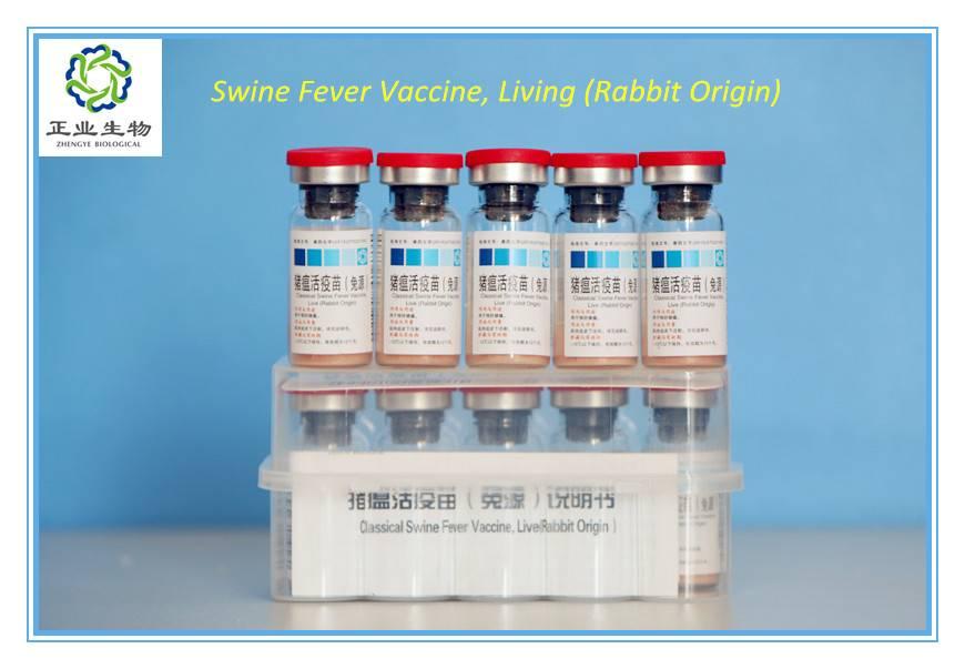 Classical Swine Fever Vaccine, Live.