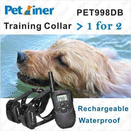 300M Remote Pet Training Collar with Rechargeable and Waterproof 1 for 2