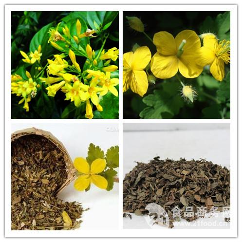 High quality Greater Celandine Extract, Greater Celandine P.E./2%~10%chelidonine