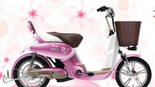 Attractive E-bikes/YT-EB-008 XIUYING