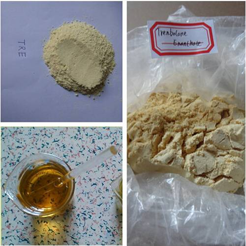 Injectable Anabolic Steroids Trenbolone Enanthate 200mg/ml For Muscle Growth