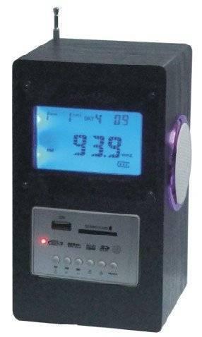 JL-D02 radio mini speakers with usd mini speaker