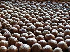 Selling Macadamia Nuts