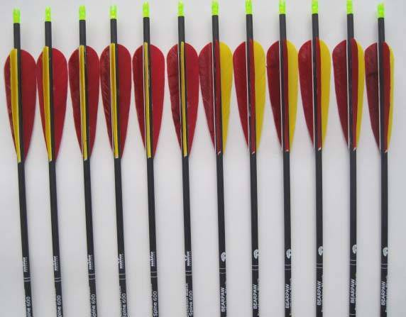 carbon arrow