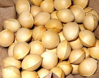 Ginkgo Nuts/Macadamia Nuts/Brazil Nuts