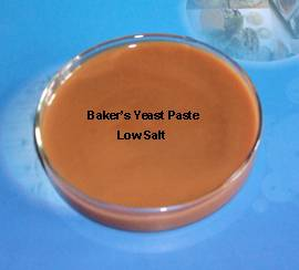 Baker's Yeast Extract Powder/Paste for food seasoning